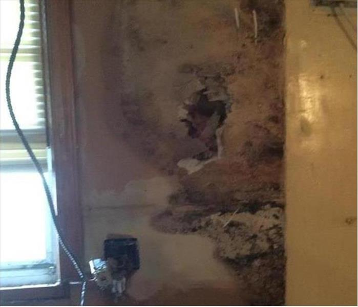 Mold Damage in a Security Rental Before