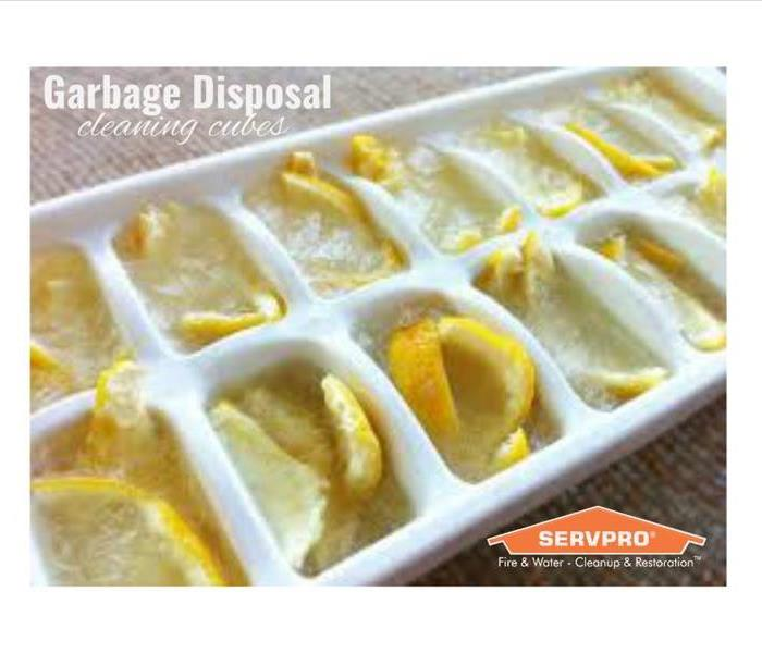 Cleaning Garbage Disposal Cleaning Cubes