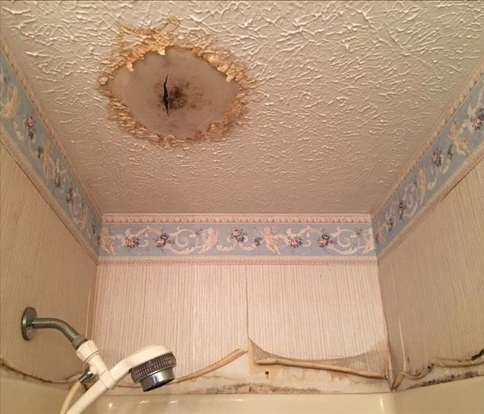 Mold Remediation Neglected Leaks Lead to Major Mold Damage in Colorado Springs